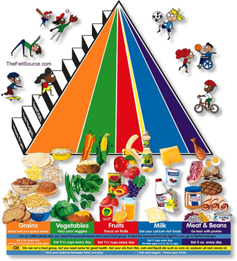 The Food Guide Pyramid is an