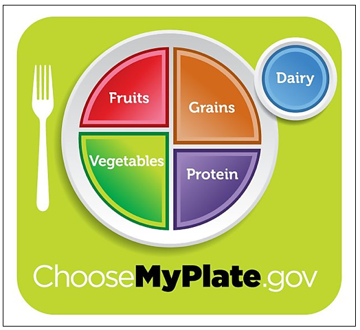 new food pyramid plate