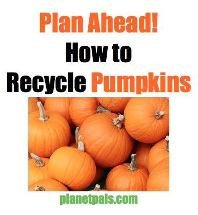 how to recycle pumpkins